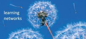 external image learning_networks_dandelion.jpg?w=300&h=137